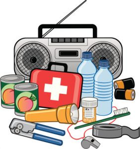 Emergency Survival Preparedness Kit